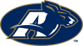 Akron Zips 2002-Pres Secondary Logo iron on sticker
