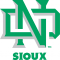 North Dakota Fighting Hawks 2012-2015 Alternate Logo 02 iron on sticker