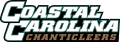 Coastal Carolina Chanticleers 2002-Pres Wordmark Logo decal sticker