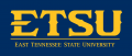 ETSU Buccaneers 2014-Pres Wordmark Logo 11 iron on sticker