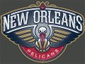 New Orleans Pelicans Plastic Effect Logo iron on sticker