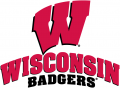 Wisconsin Badgers 2002-Pres Alternate Logo 03 decal sticker