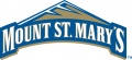 Mount St. Marys Mountaineers 2004-Pres Secondary Logo 02 iron on sticker