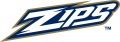 Akron Zips 2002-Pres Wordmark Logo 02 iron on sticker