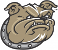 Bryant Bulldogs 2005-Pres Secondary Logo iron on sticker