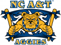 North Carolina A&T Aggies 2006-Pres Secondary Logo 01 iron on sticker