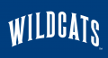 Villanova Wildcats 1996-Pres Wordmark Logo decal sticker