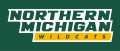 Northern Michigan Wildcats 2016-Pres Wordmark Logo iron on sticker