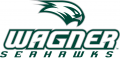 Wagner Seahawks 2008-Pres Primary Logo iron on sticker