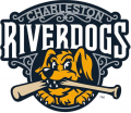 Charleston Riverdogs 2016-Pres Primary Logo iron on sticker