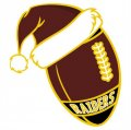 Washington Redskins Football Christmas hat logo decal sticker