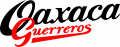Oaxaca Guerreros 2000-Pres Wordmark Logo iron on sticker