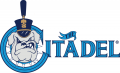 The Citadel Bulldogs 2000-Pres Primary Logo iron on sticker
