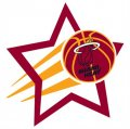 Miami Heat Basketball Goal Star logo iron on sticker