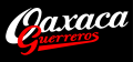 Oaxaca Guerreros 2000-Pres Wordmark Logo 2 iron on sticker