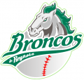 Reynosa Broncos 2009-Pres Primary Logo iron on sticker