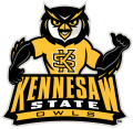 Kennesaw State Owls 2012-Pres Mascot Logo 01 decal sticker