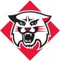 Davidson Wildcats 2010-Pres Primary Logo iron on sticker