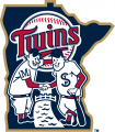 Minnesota Twins 2015-Pres Alternate Logo iron on sticker