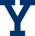 Yale Bulldogs 2000-Pres Alternate Logo decal sticker