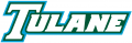 Tulane Green Wave 1998-2013 Wordmark Logo 02 decal sticker