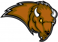 Lipscomb Bisons 2002-2011 Secondary Logo iron on sticker