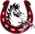 Calgary Stampeders 2003-Pres Alternate Logo decal sticker