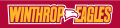 Winthrop Eagles 1995-Pres Wordmark Logo 05 iron on sticker