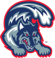 Stony Brook Seawolves 1998-2007 Alternate Logo iron on sticker