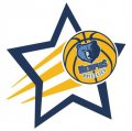 Memphis Grizzlies Basketball Goal Star logo iron on sticker