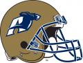 Akron Zips 2002-Pres Helmet Logo iron on sticker