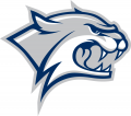 New Hampshire Wildcats 2000-Pres Secondary Logo 01 iron on sticker