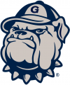 Georgetown Hoyas 1996-Pres Secondary Logo iron on sticker