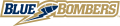 Winnipeg Blue Bombers 2005-2011 Wordmark Logo 2 iron on sticker