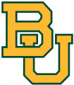 Baylor Bears 2005-2018 Alternate Logo 05 iron on sticker