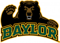 Baylor Bears 2005-2018 Alternate Logo 08 iron on sticker