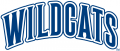 Villanova Wildcats 1996-Pres Wordmark Logo 02 decal sticker
