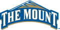 Mount St. Marys Mountaineers 2004-Pres Primary Logo iron on sticker