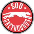 Sault Ste. Marie Greyhounds 1999 00-2008 09 Primary Logo iron on sticker