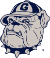 Georgetown Hoyas 1978-1995 Secondary Logo iron on sticker