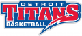 Detroit Titans 2008-2015 Wordmark Logo iron on sticker