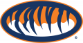 Auburn Tigers 1998-Pres Alternate Logo 02 iron on sticker