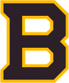 Boston Bruins 2018 19 Special Event Logo iron on sticker