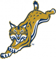 Quinnipiac Bobcats 2002-2018 Alternate Logo 06 iron on sticker