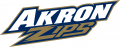Akron Zips 2002-Pres Wordmark Logo iron on sticker