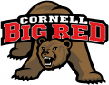 Cornell Big Red 1998-2001 Primary Logo decal sticker