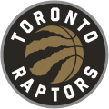 Toronto Raptors 2015-Pres Alternate Logo iron on sticker