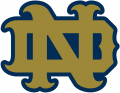 Notre Dame Fighting Irish 1994-Pres Alternate Logo 17 iron on sticker