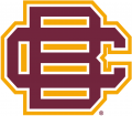 Bethune-Cookman Wildcats 2010-2015 Secondary Logo iron on sticker
