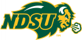 North Dakota State Bison 2012-Pres Primary Logo decal sticker